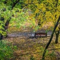 Скамейка в парке :: Константин Бобинский