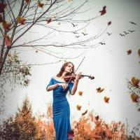 Одинокая скрипка :: Фотохудожник Наталья Смирнова