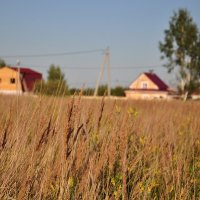 в деревне :: Августа