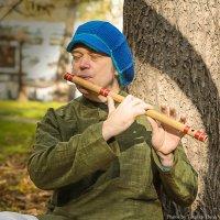 _играй музыкант..... :: Elena Tatarko (фотограф)