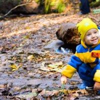 прогулка в осеннем лесу :: Даниил Сазин