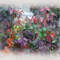 Осеннее настроение... :: Тамара (st.tamara)
