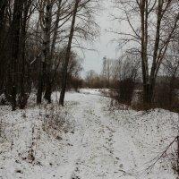 Первый снег :: Дмитрий Арсеньев