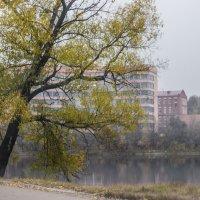Осень в городе :: Elena Ignatova