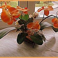 Цветы -цвета осени ! :: Лара ***