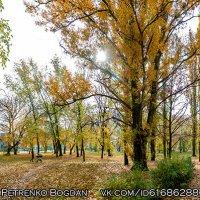 Осень в городском саду - Кременчуг :: Богдан Петренко