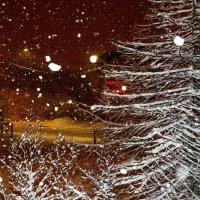 а, снег кружится, летает, и падает.... :: Борис Швец