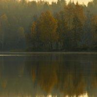 Утром осенним.... :: Юрий Цыплятников