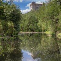 В шумном городе на тихом пруду :: Светлана