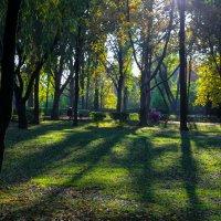 Осень в парке ( Краснодар, Солнечный парк) :: Таня Харитонова