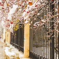 И падал снег ( полосы и пятна ) :: Микто (Mikto) Михаил Носков