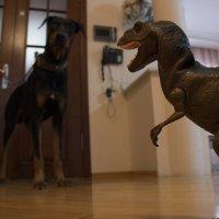 Дино VS собака :: Эмиль Абд