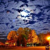Лунная ночь в парке :: Иван Николаевич