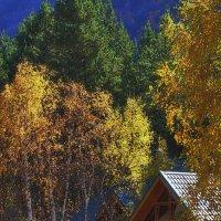 Осенний домик... :: M Marikfoto