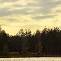 озеро в Каннельярви :: Лида Подволоцкая