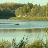 рыбалка в октябре. :: Михаил Жуковский