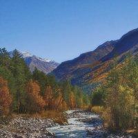 Осенняя речка :: M Marikfoto