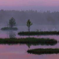 Туман 3 :: Альберт Беляев