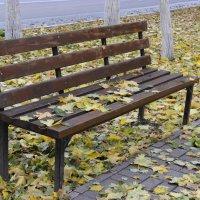 Просто осень наступила... :: Ирина Королева