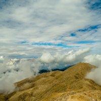 тропинка в горах :: Сергей Цветков
