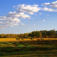 Повстречалось лето с осенью... :: Вячеслав Минаев