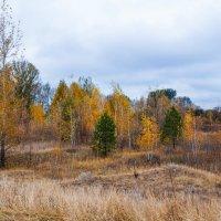 Осень :: Андрей Воробьев