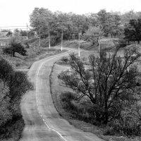 Путь-дорожка... :: Копыткина Юлия