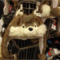 Детская шапочка волка :: Вера