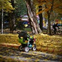 В осеннем парке :: Сергей