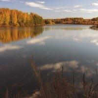 Осень...Осень... :: Андрей Романов