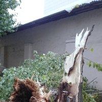 Очередная природная катастрофа :: Galina194701