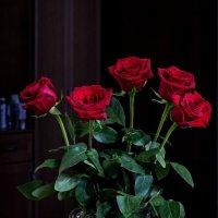 букетик роз :: gribushko грибушко Николай