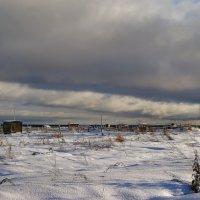 Из осени в зиму :: Наталья Гжельская