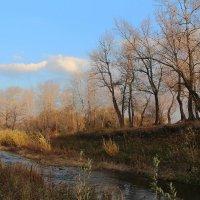 Теряют листья дерева :: Dr. Olver  ( ОлегЪ )