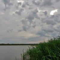 Утренняя рыбалка на озере. :: Святец Вячеслав