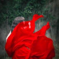 http://vk.com/nastasi_photo :: Анастасия Пугачева