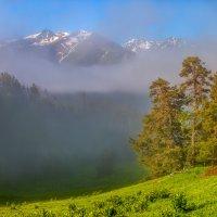 Туманная картина. :: Фёдор. Лашков