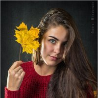 Осенний лист :: Борис Борисенко