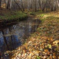 Ручей осенью :: Андрей Лукьянов