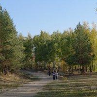 сентябрь, дорога на Царёв курган :: Ирина ***