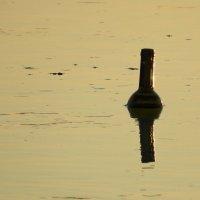 В лучах заката по пути в Азовское море :: Алексей Меринов