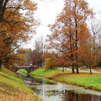 Осень золотая... :: Марина Харченкова