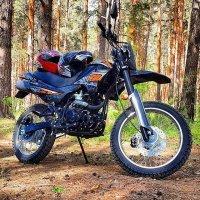 Racer Panter 200 в естественной среде :: Никита Удилов