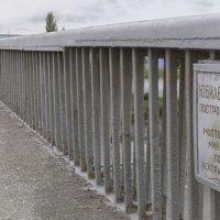Юбилейный мост :: Алексей Масалов
