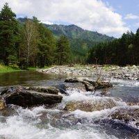 Горная река Чемал :: Наталия Григорьева