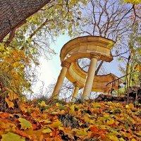 Что такое осень... :: Alexandr Zykov