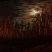Осенняя соната.. :: Stream