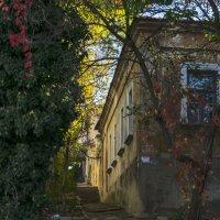 Осенний переулок :: Игорь Кузьмин