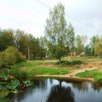 По реке  Оредеж :: Виктор Елисеев