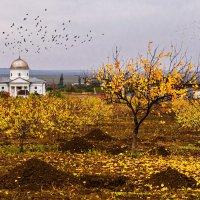 Октябрь рядом с Коктебелем :: Владимир Колесников